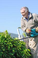 Gardening is enjoyed by many